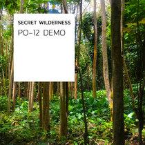 PO-12 Demo cover art