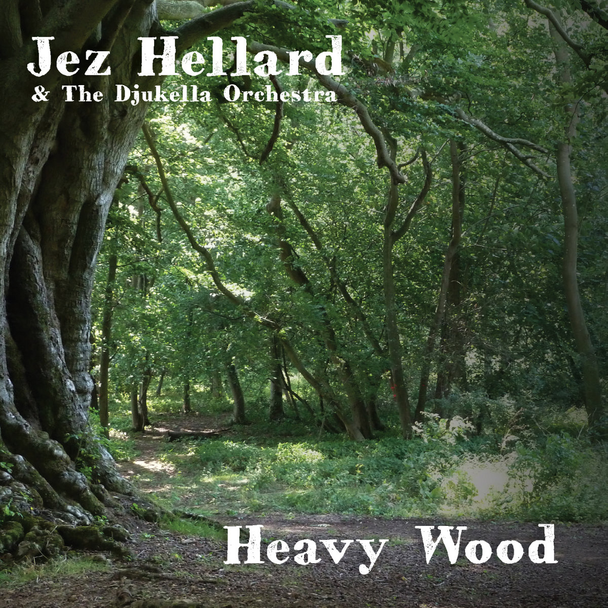 Image result for jez hellard heavy wood