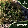 Flutter - V.A. (Flow Records) Cover Art