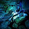 Moonlightning Cover Art