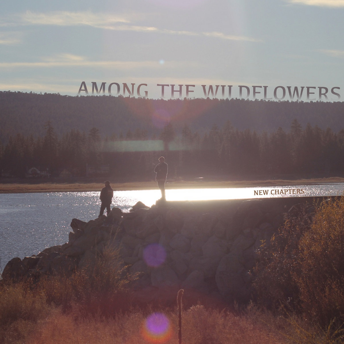 Among The Wildflowers - New Chapters [EP] (2019)