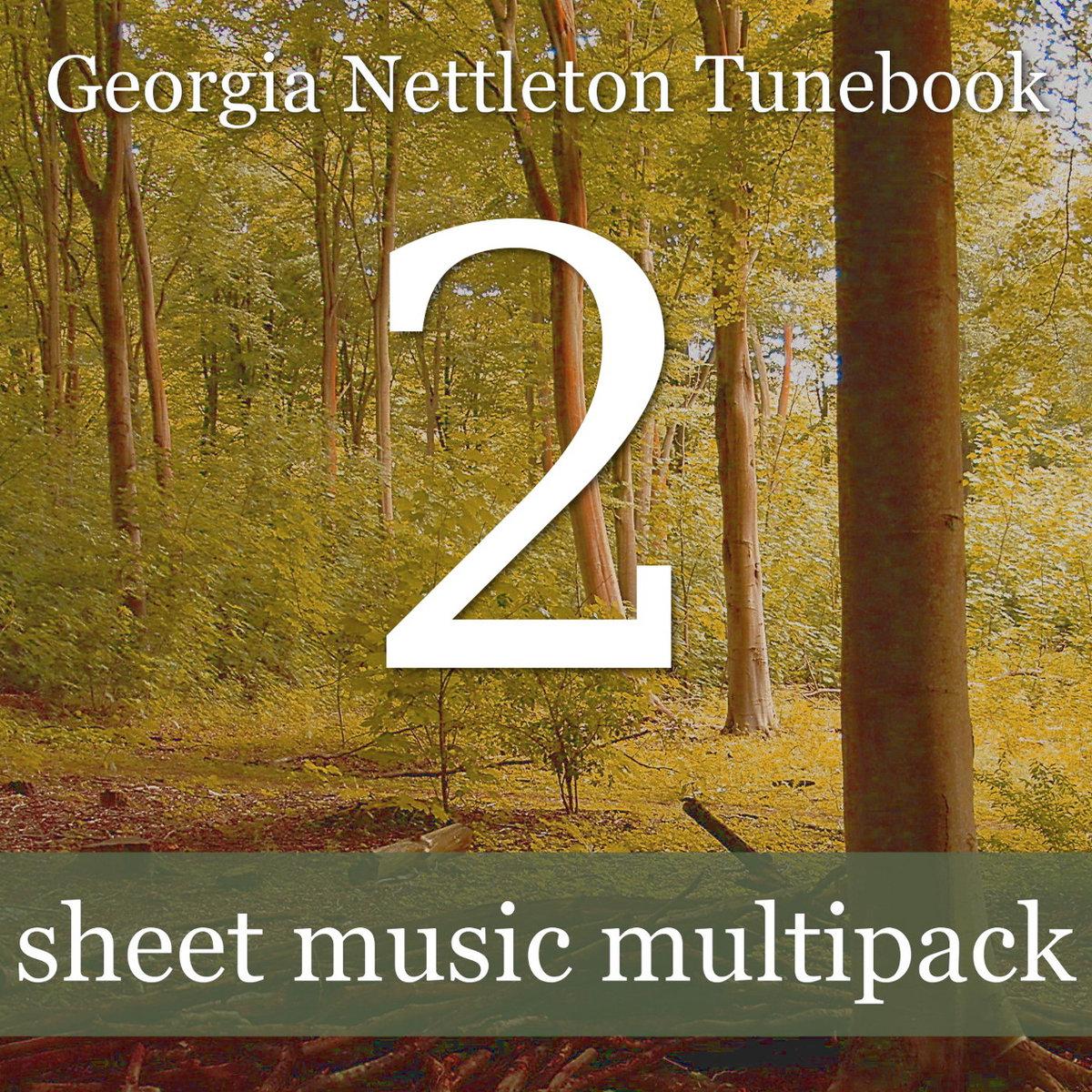 Georgia Nettleton Tunebook 2 - celtic violin solo sheet music with