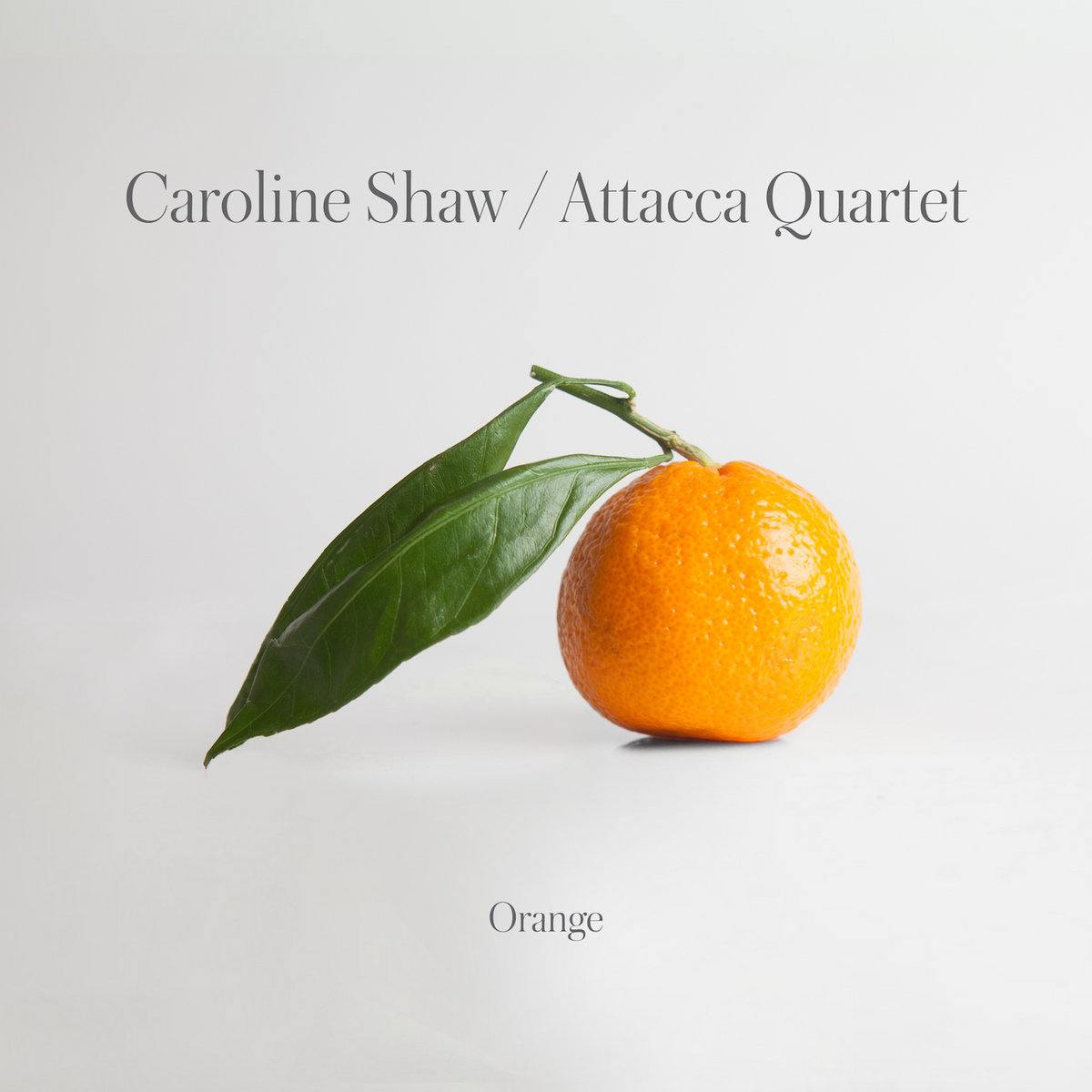 Image result for shaw orange
