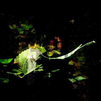 Shrub EP by Adriatic