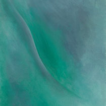 Cove cover art