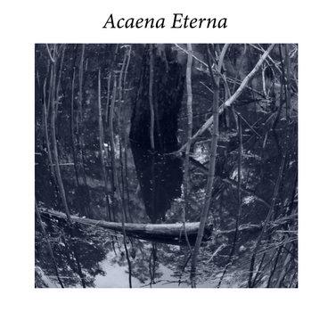 Acaena Eterna EP main photo