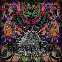 Twisted Kala - PsyWonder Your Land! cover art