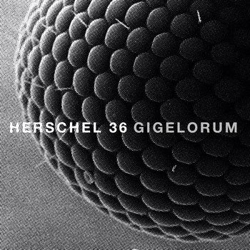 Gigelorum by Herschel 36