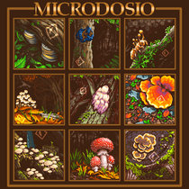 Microdosio cover art