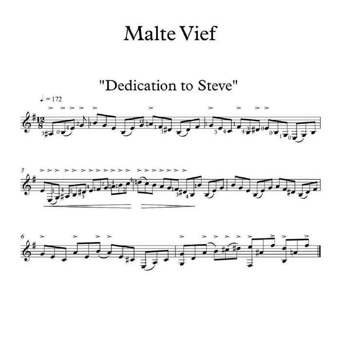Dedication to Steve