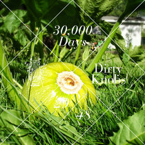 30,000 Days - 29 cover art