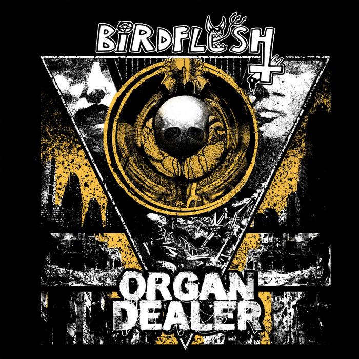 Birdflesh/Organ Dealer - Split