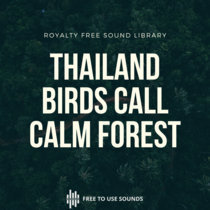 Calm Forest! Singing Birds In The Woods Of Thailand cover art