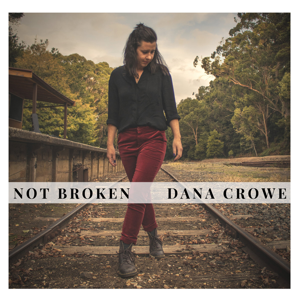 Not Broken by Dana Crowe