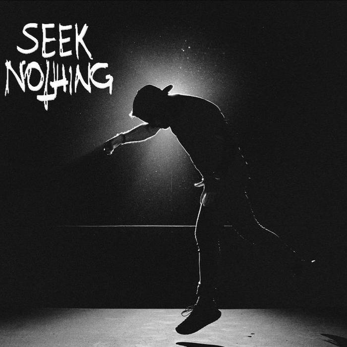 Seek Nothing cover art