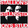 Stallion's Stud - STLLNSSTD (AD006)
