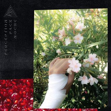 PERCEPTION PACK main photo