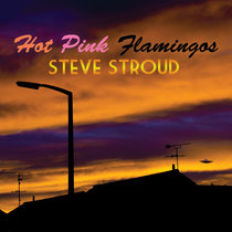 Hot Pink Flamingos cover art
