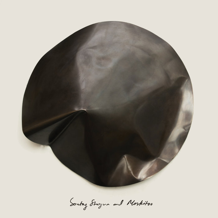 Buy Sontag Shogun & Moskitoo: The Things We Let Fall Apart / The Thunderswan via Bandcamp