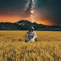 Wander in the Wonder cover art
