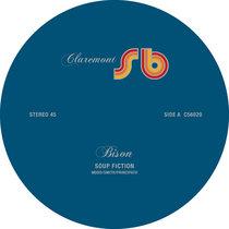 Bison - Soup Fiction (Sal P & Sean Bee Mix) cover art