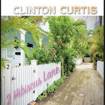 2 Hibiscus Lane cover art