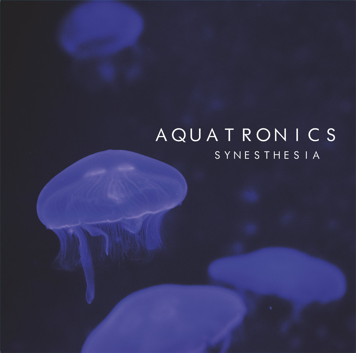 Synesthesia | KinetiK Records
