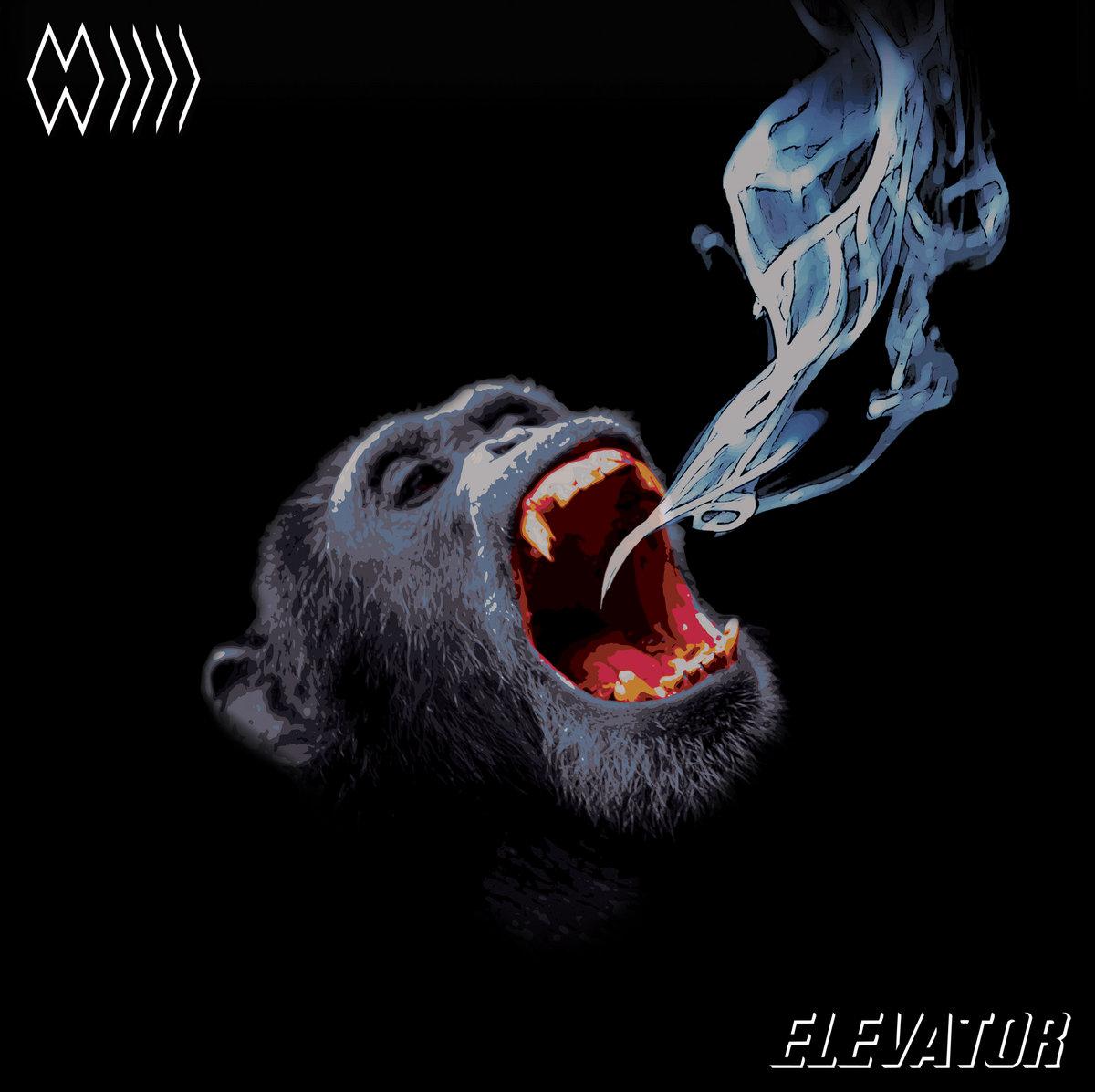 The band whose name is a symbol elevator ensemble bonus by cardinal fuzz shop buycottarizona Images
