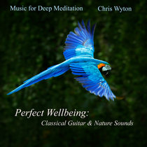 Perfect Wellbeing: Classical Guitar & Nature Sounds cover art