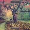 Crooked Doors (Deluxe Version) Cover Art