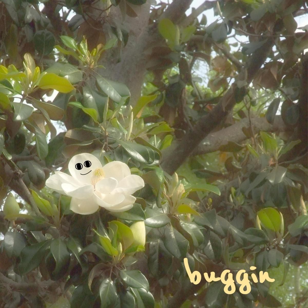 A Lazy Empty Summer Buggin
