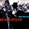 Bayou Tapestry Cover Art