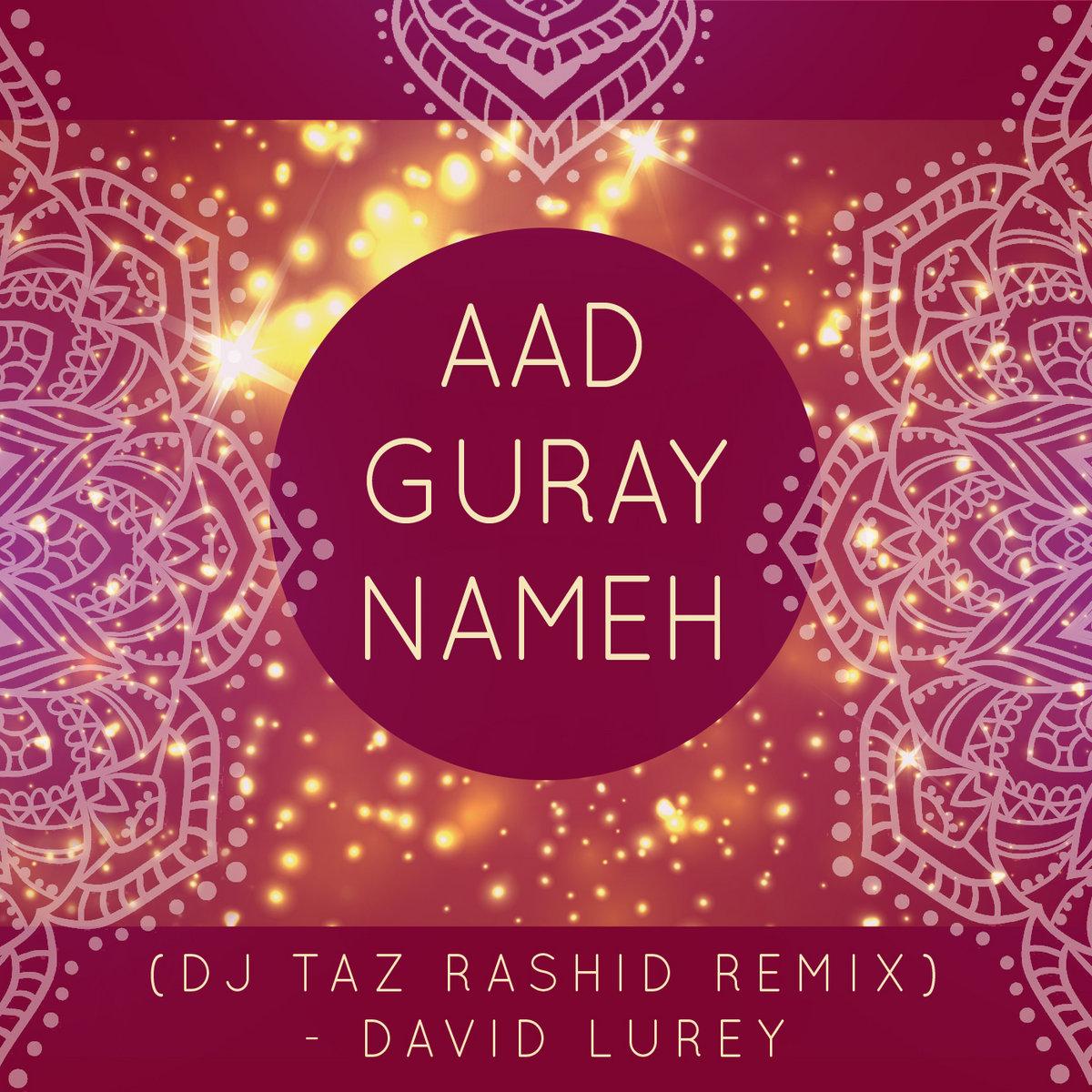 Om Hrim Namah Shivaya (Srikalogy Re-Mix) | David Lurey