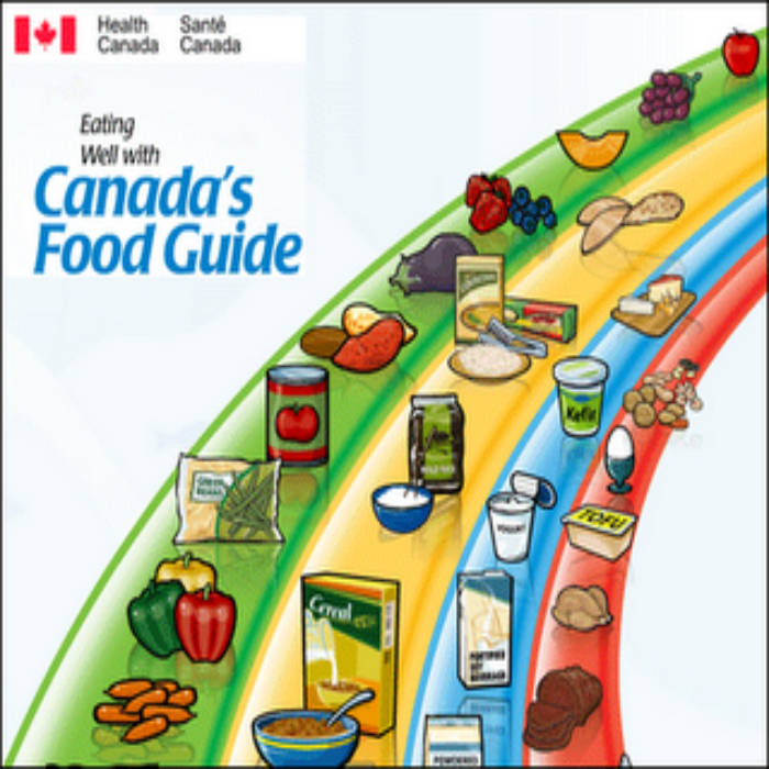 Canada S Food Guide Template