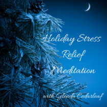 Holiday Stress Relief cover art