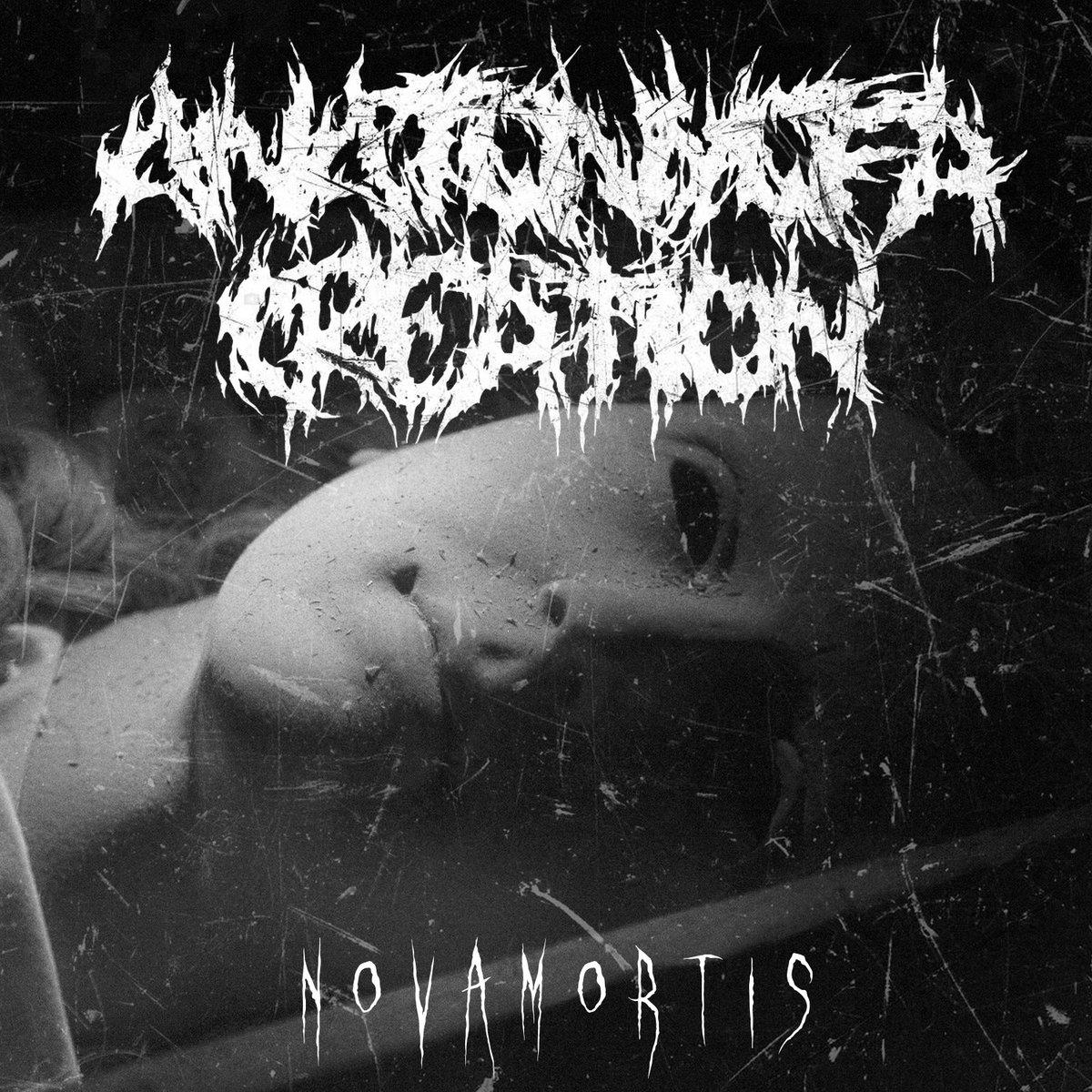Nova Mortis | Anatomy of a Creation