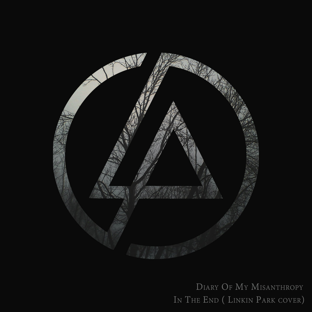 In The End Linkin Park Cover Diary Of My Misanthropy