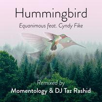 Hummingbird (Momentology, DJ Taz Rashid Remix) ft. Cyndy Fike cover art