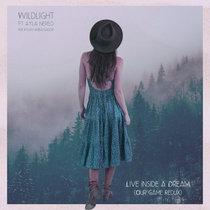 Live Inside a Dream (Our Game Redux) Ayla Nereo & The Polish Ambassador cover art