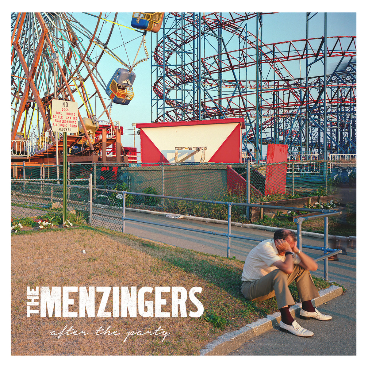 Image result for The Menzingers: After The Party album art