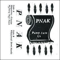 Pump Into Us cover art