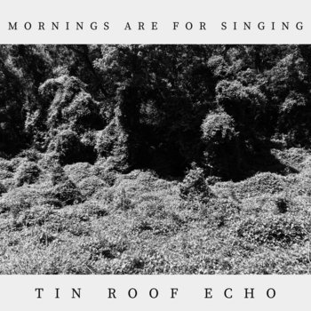 Mornings Are For Singing (2021) by Tin Roof Echo