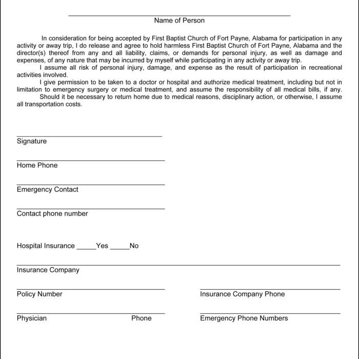 image about Skyzone Printable Waiver identified as Sky Zone Waiver Printable chafduckcori