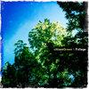 Foliage Cover Art