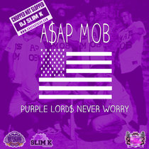 Purple Lord$ Never Worry cover art