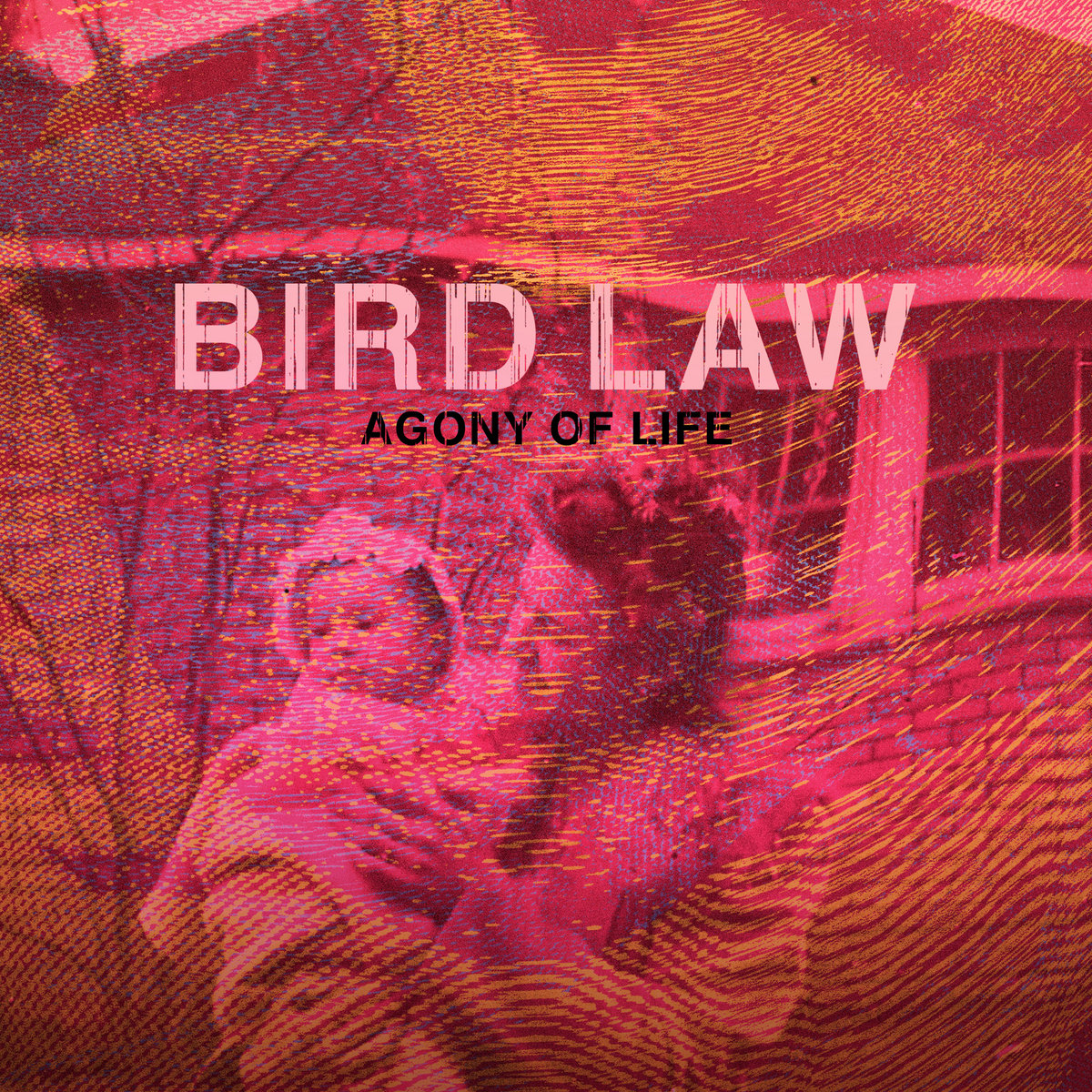 Bird Law - Agony of Life [EP] (2017)