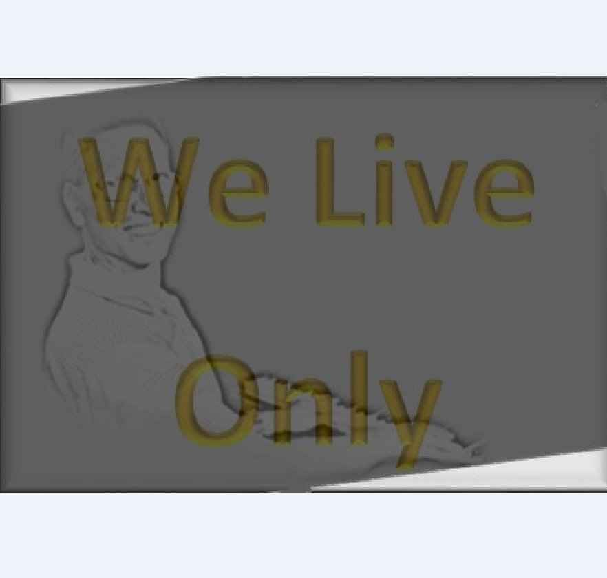 we live only once