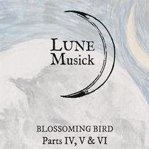 Moonlit Missive #51 cover art