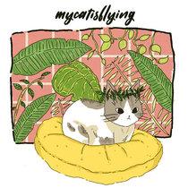 mycatisflying EP cover art
