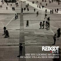 Are You Loosing My Mind (Ricardo Villalobos Remixes) cover art